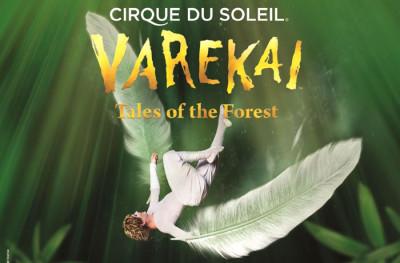 Ya puedes comprar tus entradas para Varekai -el espectáculo de Cirque du Soleil que triunfa en España- en www.taquillamediaset.es